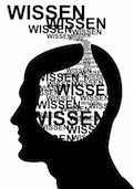Wissen im Kopf